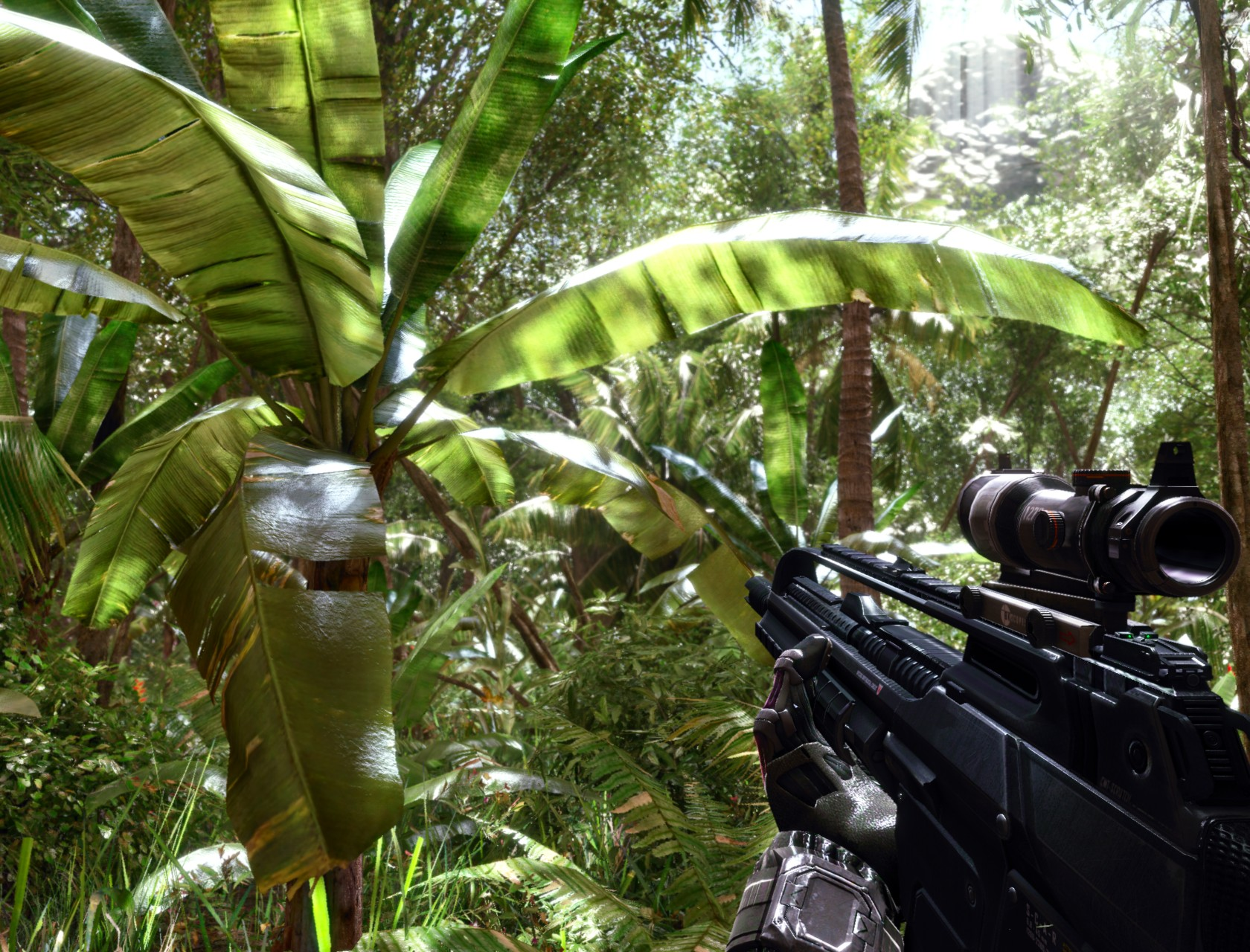 Crysis Jungle Snapshot