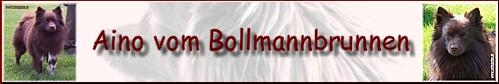 Aino vom Bollmannbrunnen